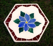 blue clematis stepping stone