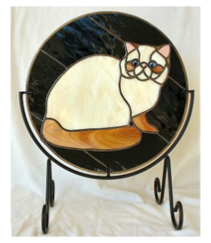 exotic shorthair cat panel