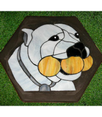 pit bull with balls stepping stone